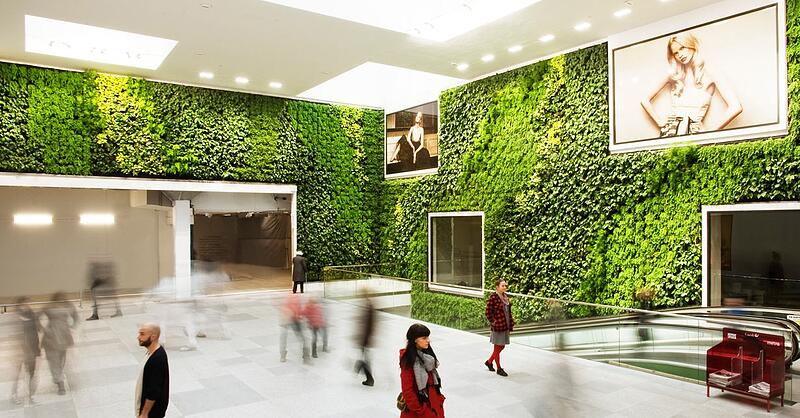 Walking through a green reception area