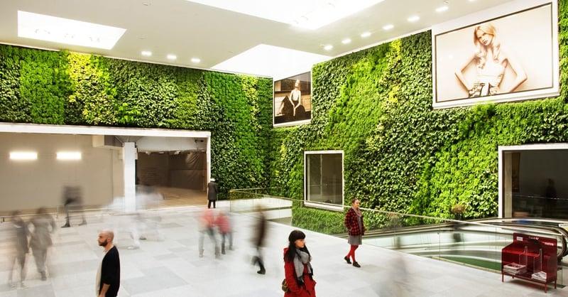 Walking through a green reception area