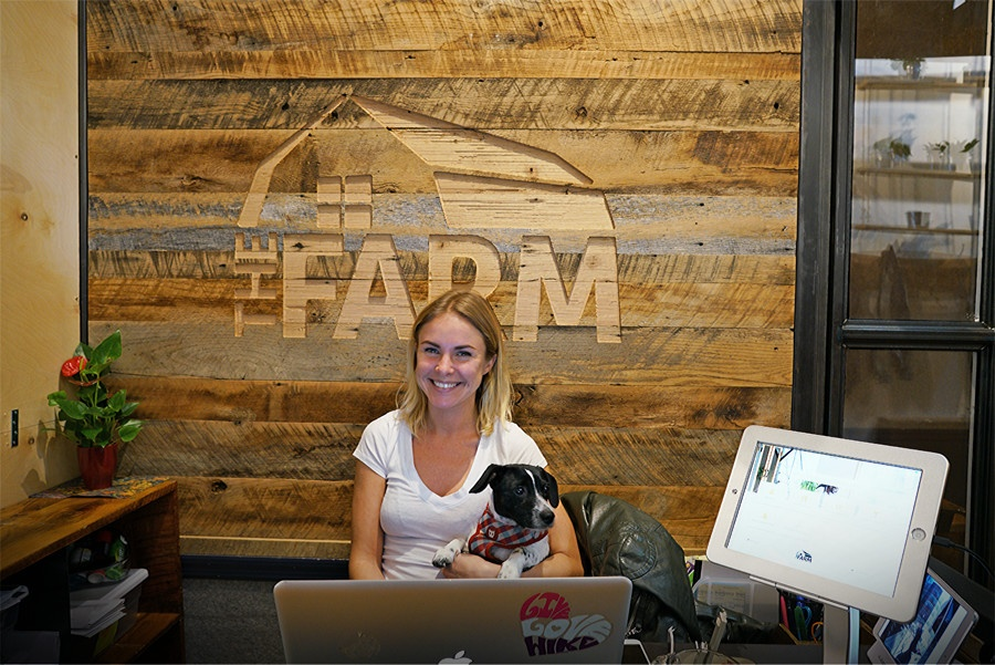 greetly-high-touch-technologies-the-farm-soho-reception-1